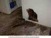 H House Plumb n Flr