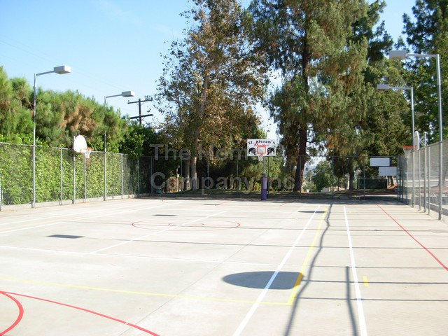 BBall Court Renovation